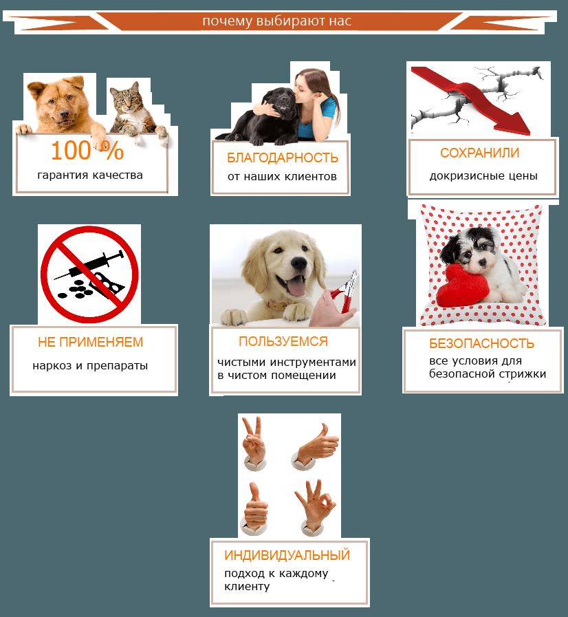 7 причин почему нас выбирают